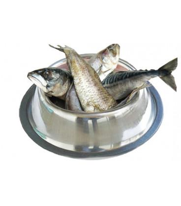 Konzerva TIM rybacia 1200g
