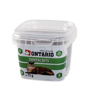 Snack ONTARIO Cat Dental Bits 75g