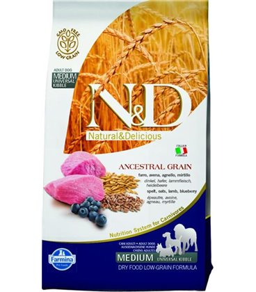 Farmina N&D dog LG adult medium lamb&blueberry 2,5 kg